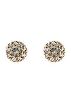 LILY AND ROSE Petite Miss Sofia Earrings Black Diamond Bubbleroom.no