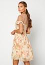 Dana Chiffon Dress
